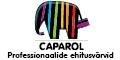 Caparol_banner